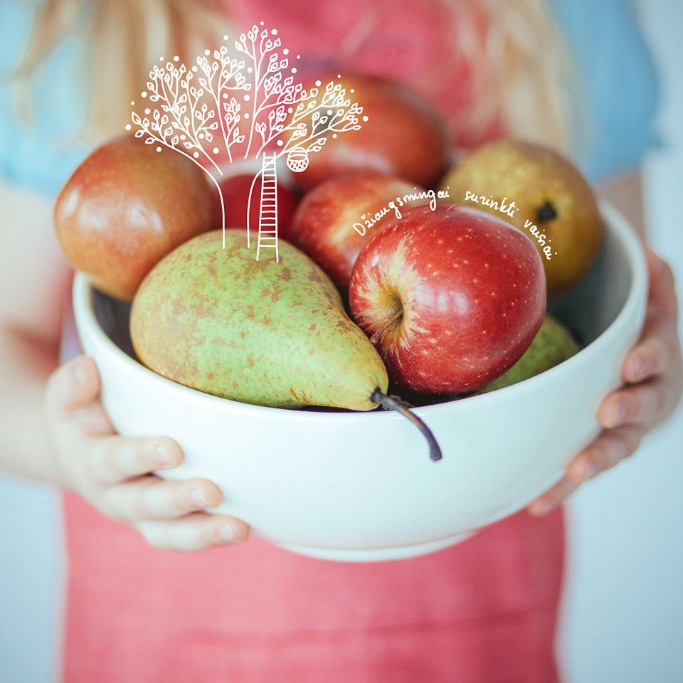 Šaltyje džiovinti vaisai, uogos, daržovės